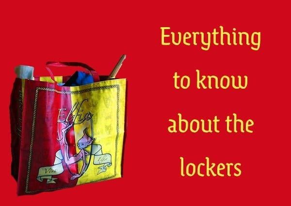 everything to know about the lockers elfia